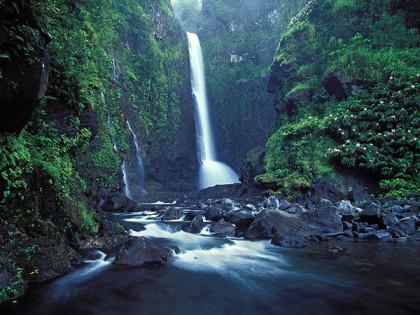 travel - maui waterfalls