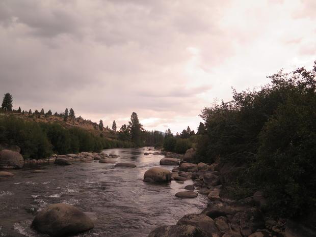 compassionate future the-river-of-life