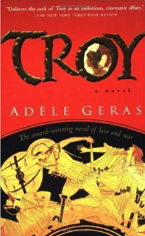 historical fiction books for teens - troy
