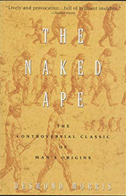 the naked ape - front cover